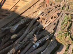 Stored timber against your home will not only attract termites but help them conceal their entry as well