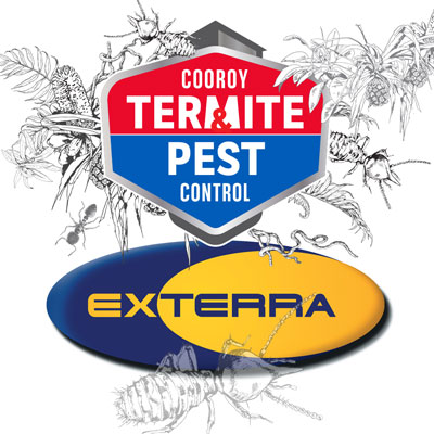 Cooroy Termite & Pest Control and Exterra Termite Management